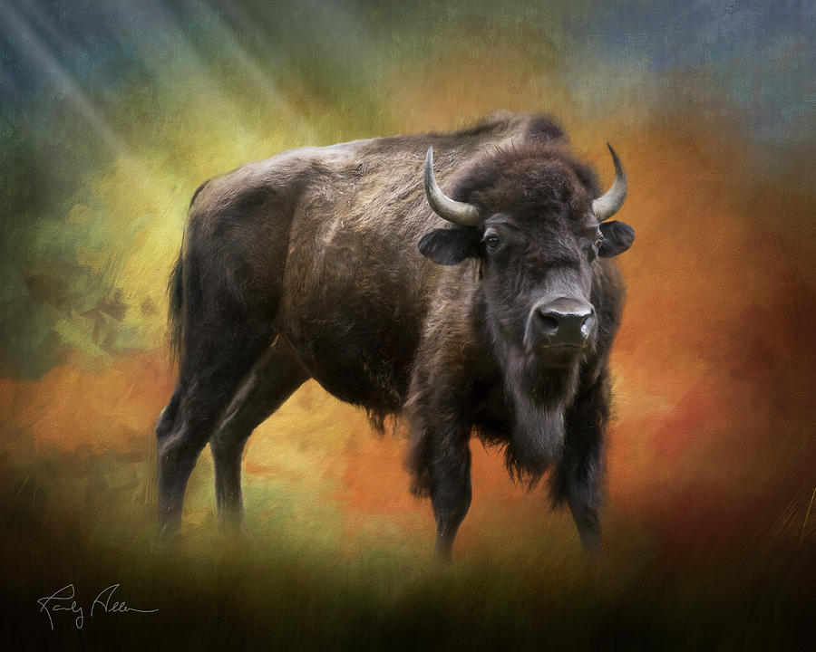 Mighty Bison by Randall Allen