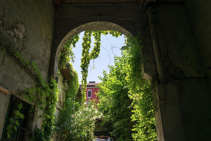 Milans Marvelous Architecture - Biophilic Courtyard Through a Green Arch by Georgia Mizuleva