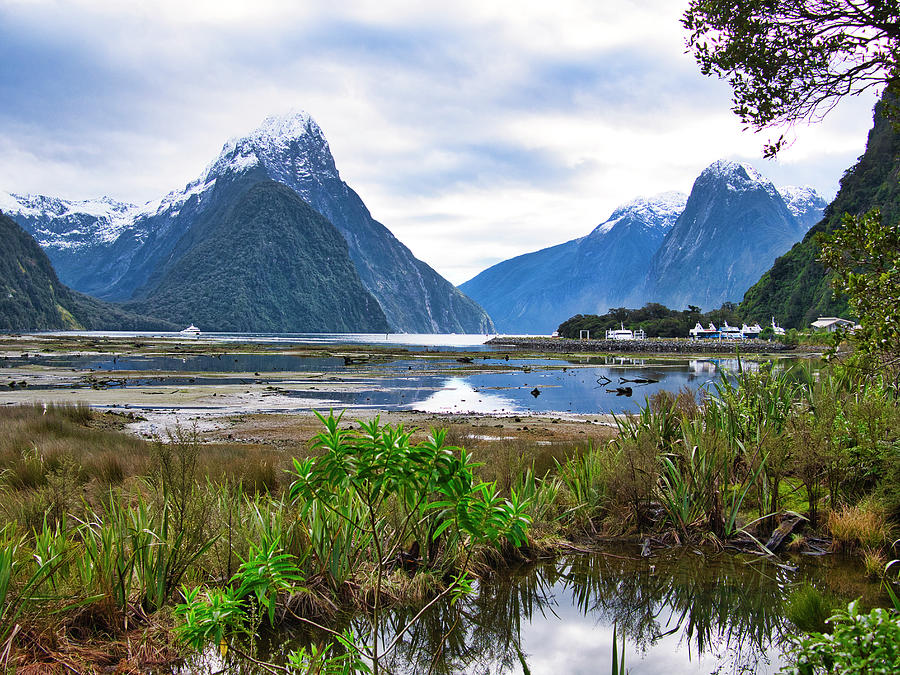 Milford Sound - New Zealand by Steven Ralser