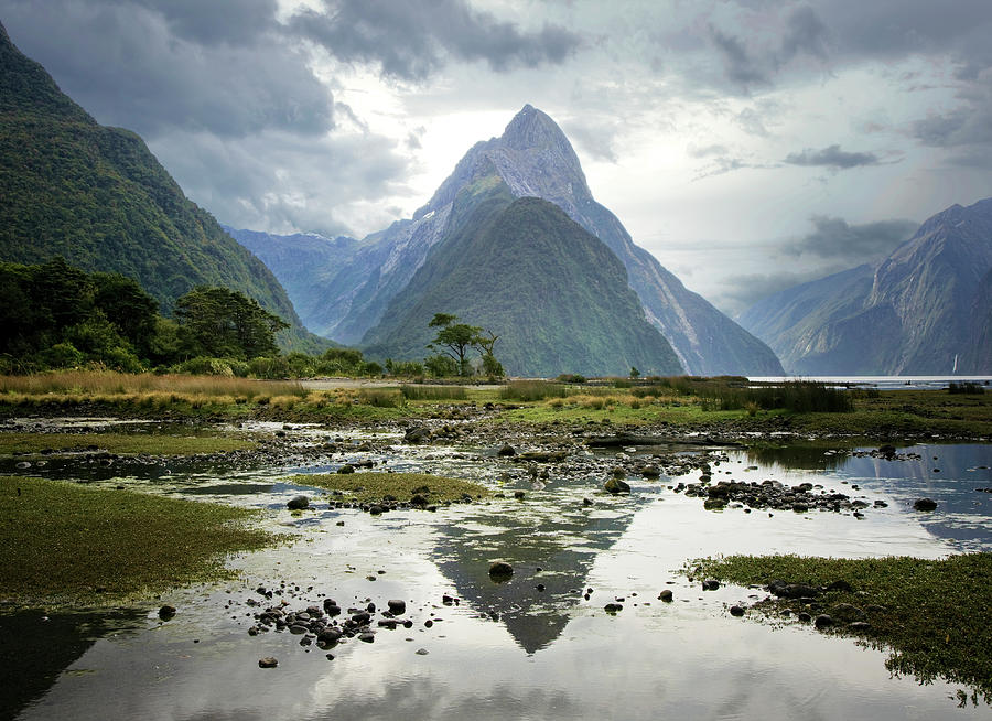Milford Sound, South Island, New Zealand Photograph by Ed Freeman