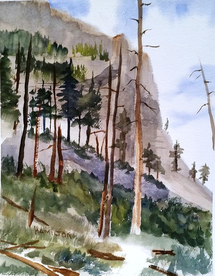 Mill Creek Canyon by Larry Hamilton