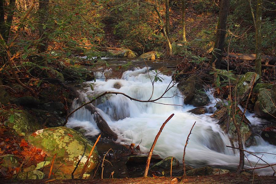 Mill Creek Cascades by Richard Parks