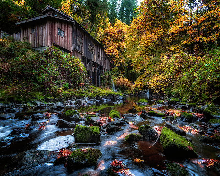 Mill in the Fall by Michael Ash