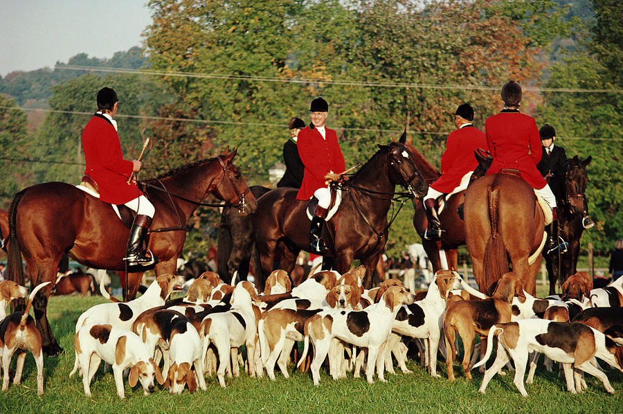 Millbrook Hunt Photograph by Slim Aarons