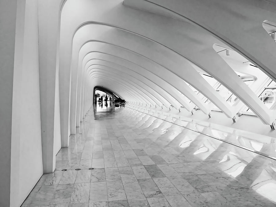 Milwaukee Art Museum 3 by Steven Ralser