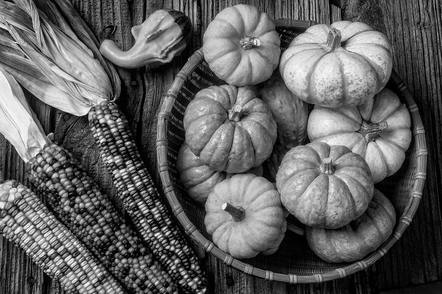 Pumpkins Photograph - Mimi Pumpkins In Wicker Bowl Black And White by Garry Gay