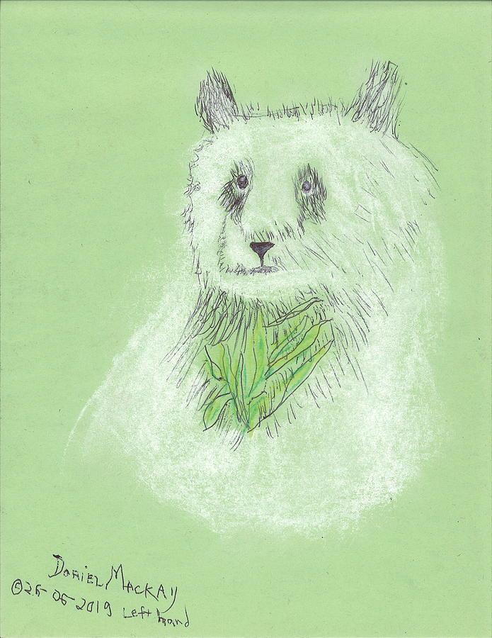 Ming the Panda by Doriel Mackay