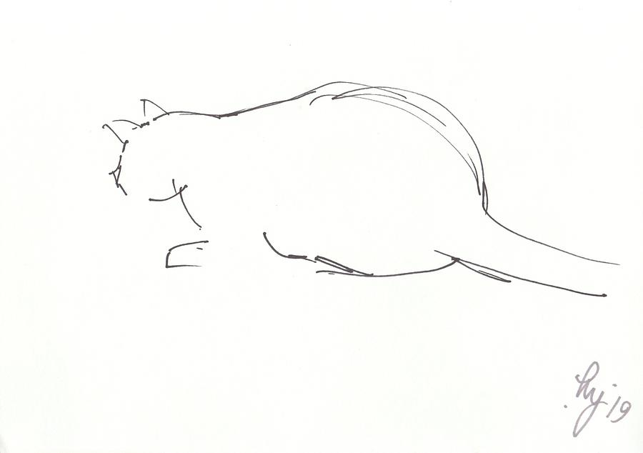 minimal outline drawing of a cat crouching by Mike Jory