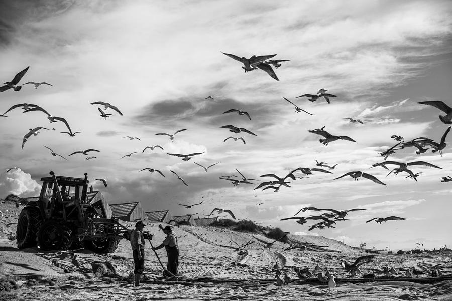 Seaside Photograph - Mira by Liesbeth Van Der Werf