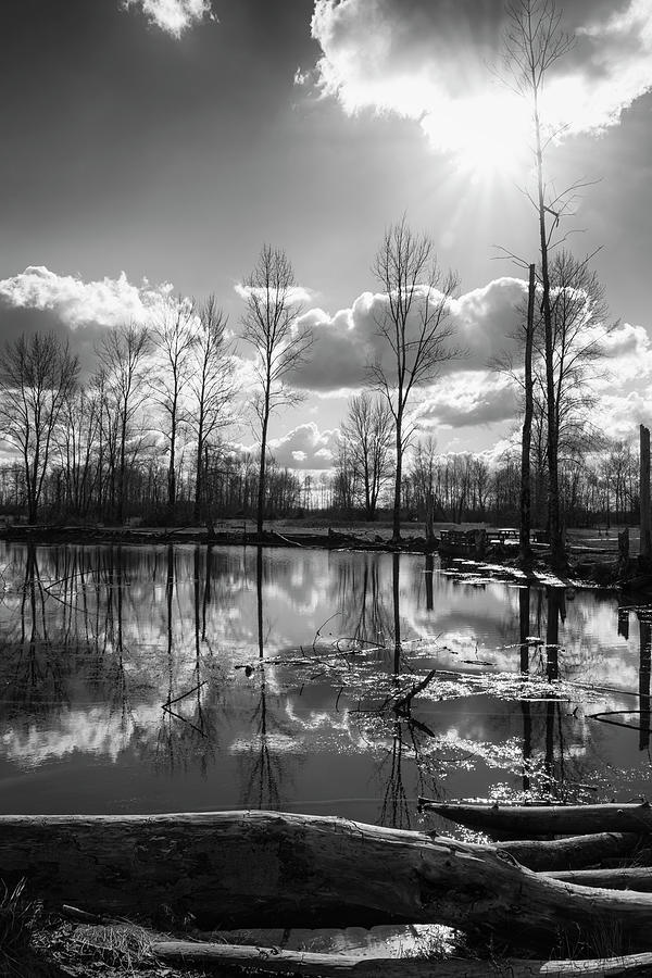 Mirror Pond  by Steven Clark