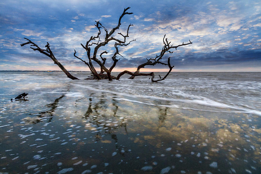 Mirrored in the Tide by Debra and Dave Vanderlaan