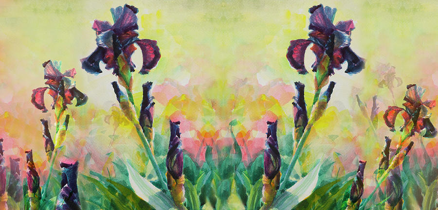Mirrored Purple Iris Digital Art