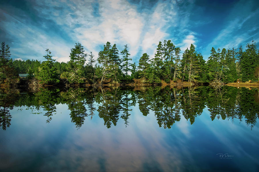 Mirrored Sky by Bill Posner