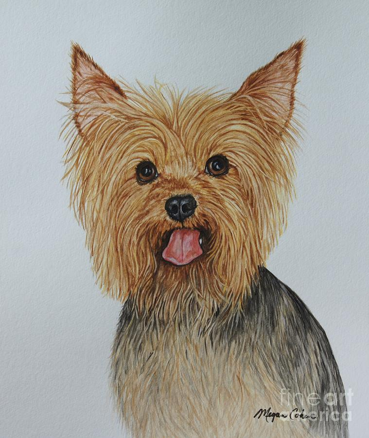 Yorkshire Terrier Painting - Miss Molly - The Yorkie by Megan