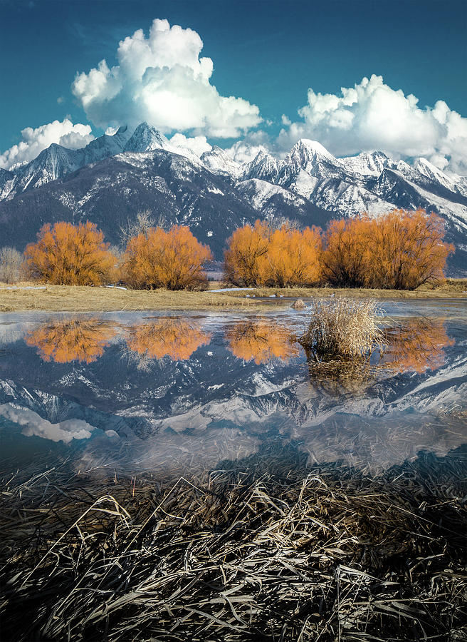Mission Mountains Spring Reflection / Mission Mountains, Montana  by Nicholas Parker