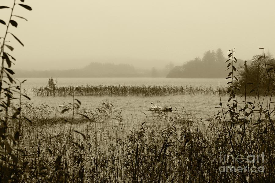 Misty Lough Eske Tint by Eddie Barron