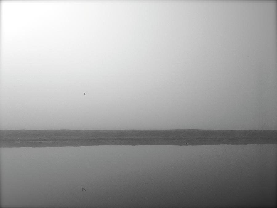 Misty Morning Photograph by Bob Davis Photography