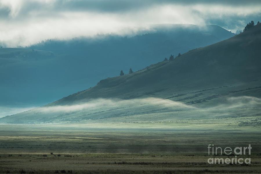 Misty Morning - Grand Teton National Park by Sandra Bronstein