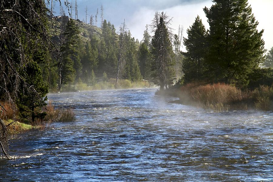 Misty Morning on Idaho's Salmon River by Ed  Riche
