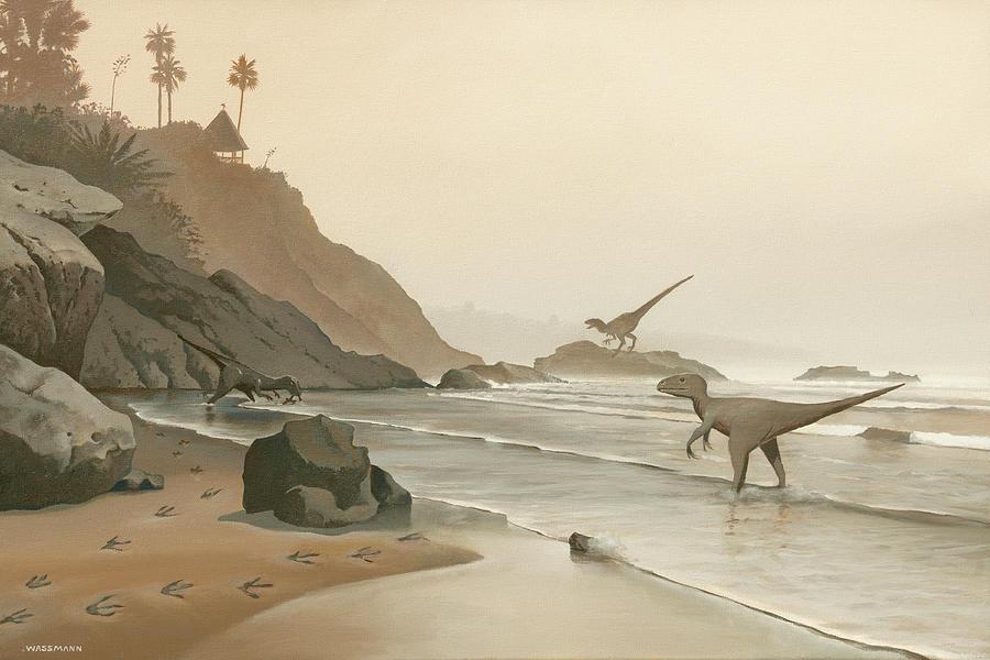 Misty Morning Rockpile Beach by Cliff Wassmann