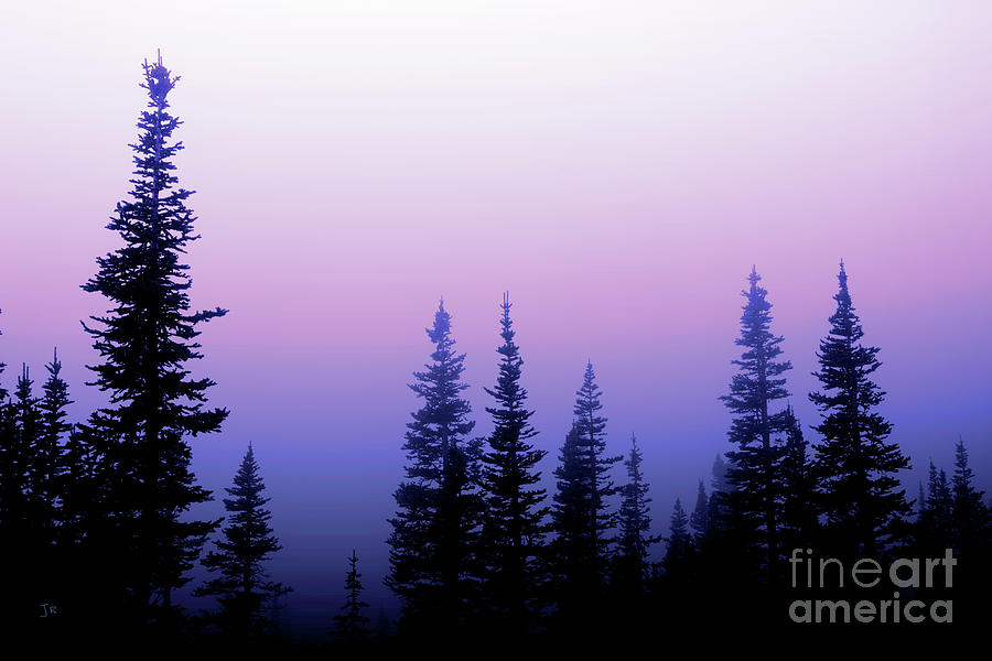 Misty Mountain Morning Going To The Sun Road Glacier National Park by John Stephens