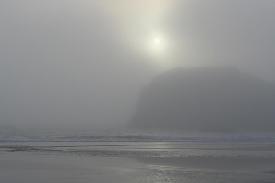 Misty Silhouette by Dylan Punke