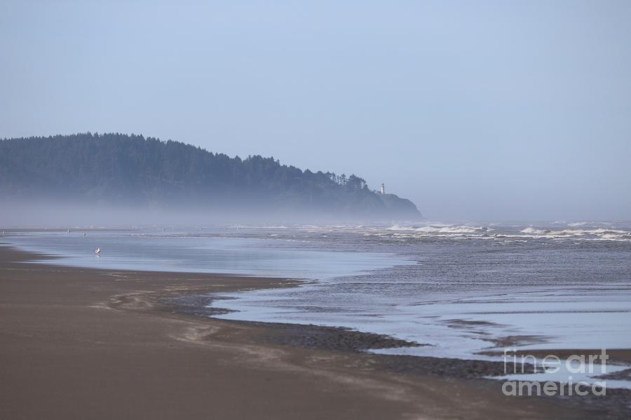 Misty Washington Beach by Carol Groenen