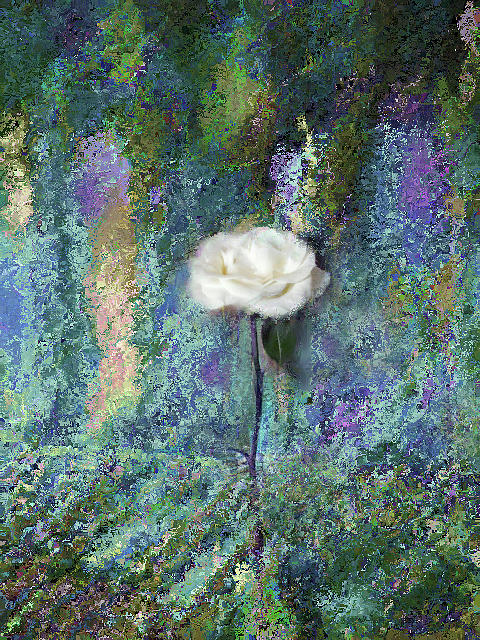 Misty White Rose in Blue and Green by Corinne Carroll