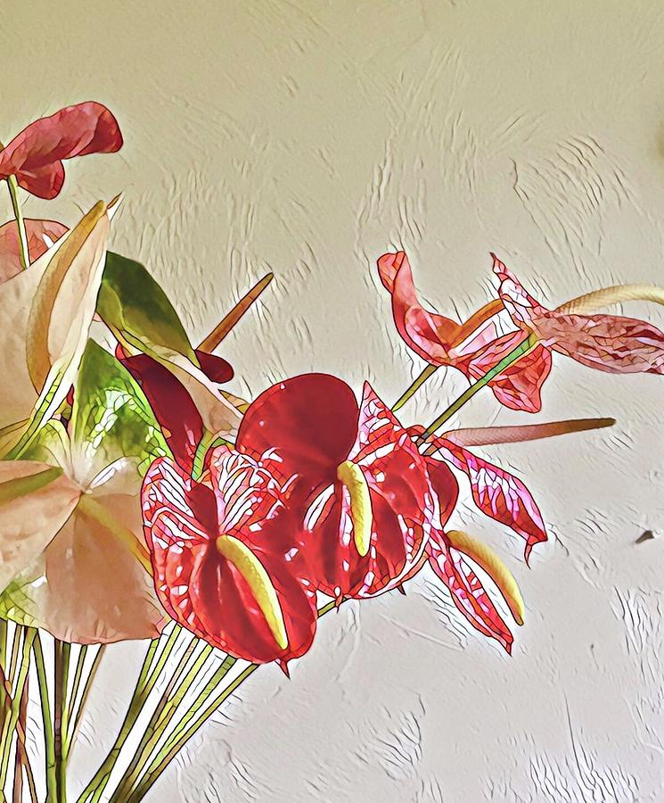 Mixed Anthurium Aloha Two by Joalene Young