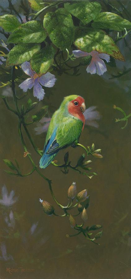 Lovebirds Photograph - Mja Peach Faced Lovebird 2 by Michael Jackson