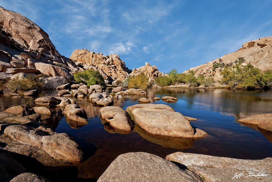 Mojave Desert Oasis by Jeff Goulden