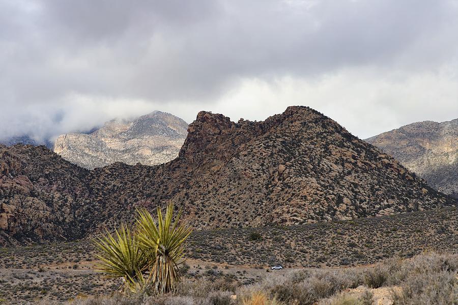Mojave Desert by Sagittarius Viking