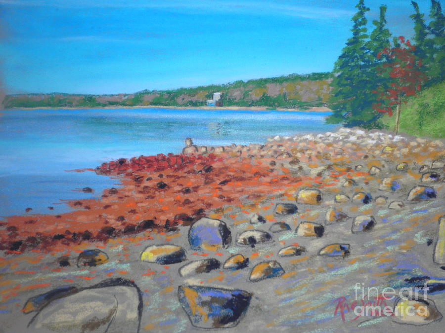 Molland's Point  by Rae  Smith PAC
