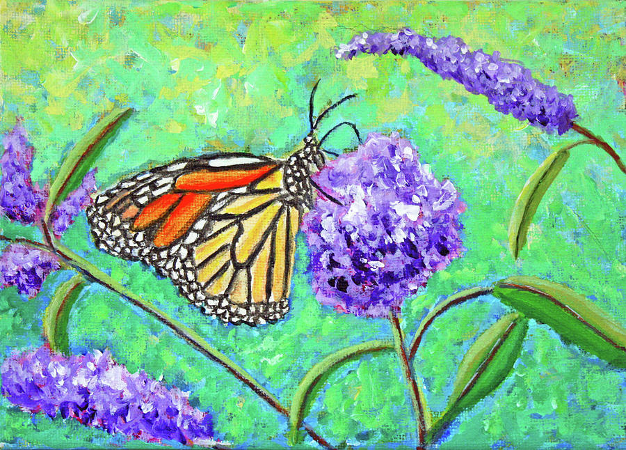 Monarch Butterfly in Spring by Kathryn Duncan