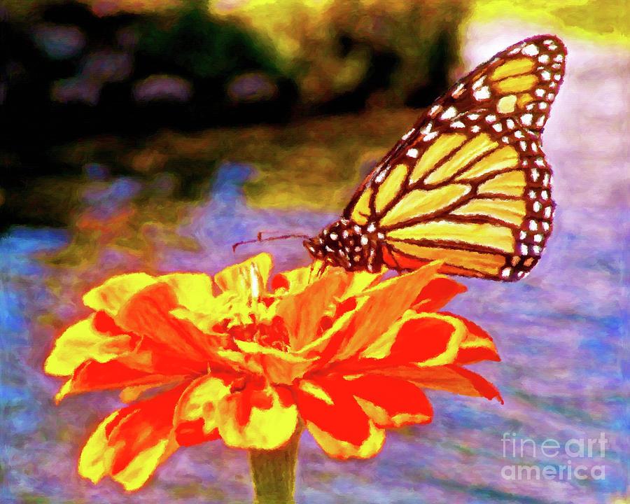 Monarch Butterfly by Jerome Stumphauzer