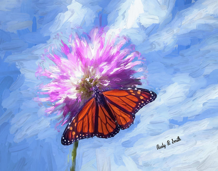 Monarch butterfly on soft pink flower. by Rusty R Smith