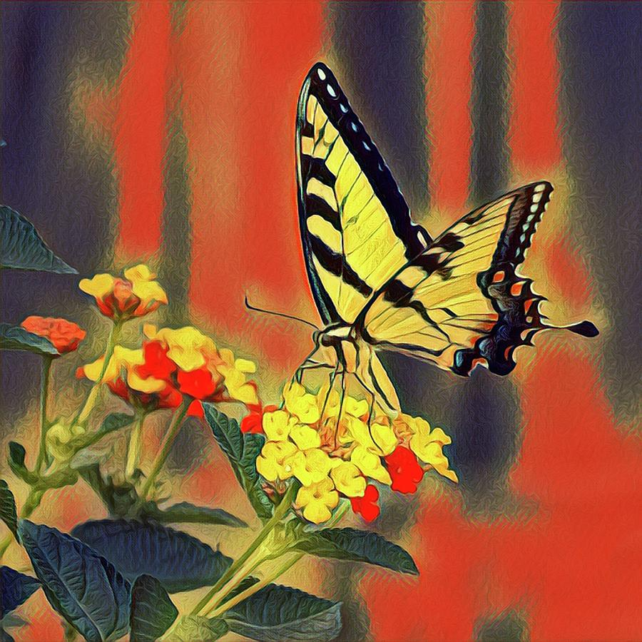Monarch Butterfly by Sarah Hanley