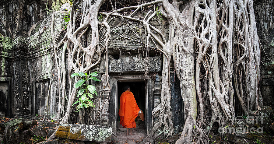 Civilization Photograph - Monk In Angkor Wat Cambodia. Ta Prohm by Banana Republic Images