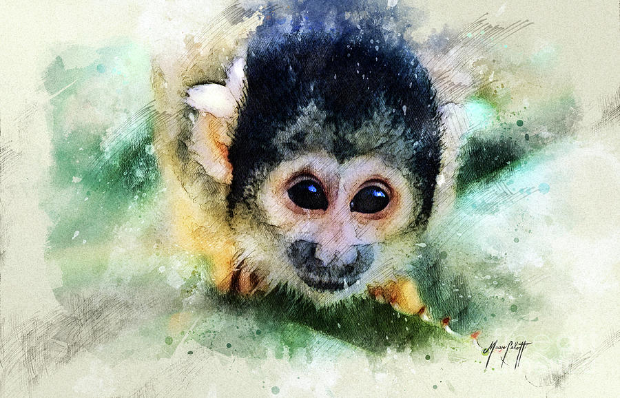 monkey 1 by Mauro Celotti