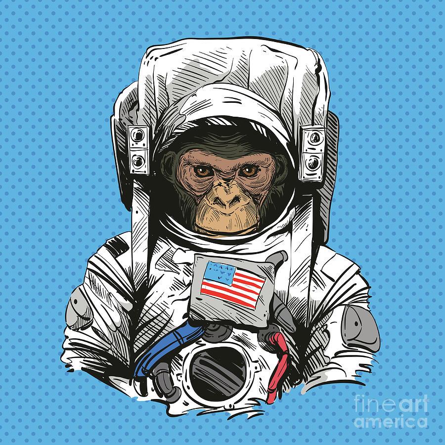 Monkey In Astronaut Suit. Hand Drawn Digital Art by Yakovliev