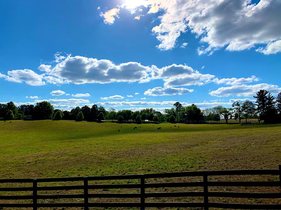 Monkton Pastures by Chris Montcalmo