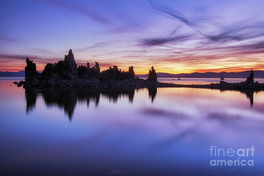 Mono Lake  by Vincent Bonafede