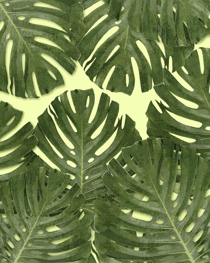 Monstera Leaf Pattern - Tropical Leaf Pattern - Green - Tropical, Botanical - Modern, Minimal Decor Mixed Media