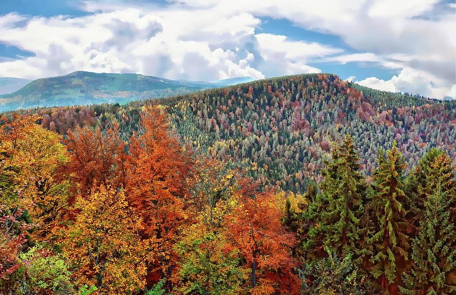 Mont Sainte-odile Autumn Photograph
