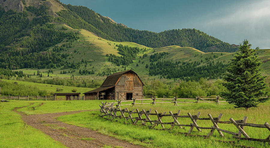 Montana Country Evening by Marcy Wielfaert