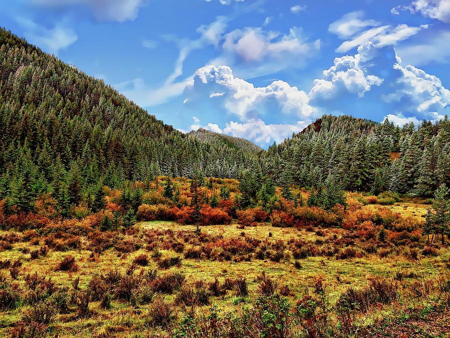 Montana In Autumn Photograph