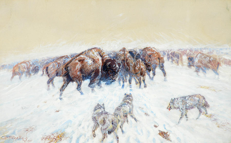 Charles M Russell Painting - Montana Winter, 1905 by Charles M Russell
