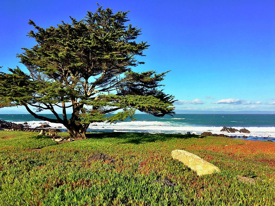 Monterey Bay Photograph - Monterey Seascape by Christina Ford