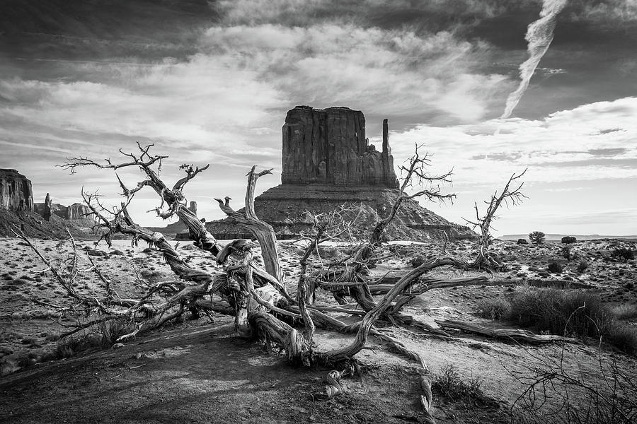 Monument Valley I by Dalibor Hanzal