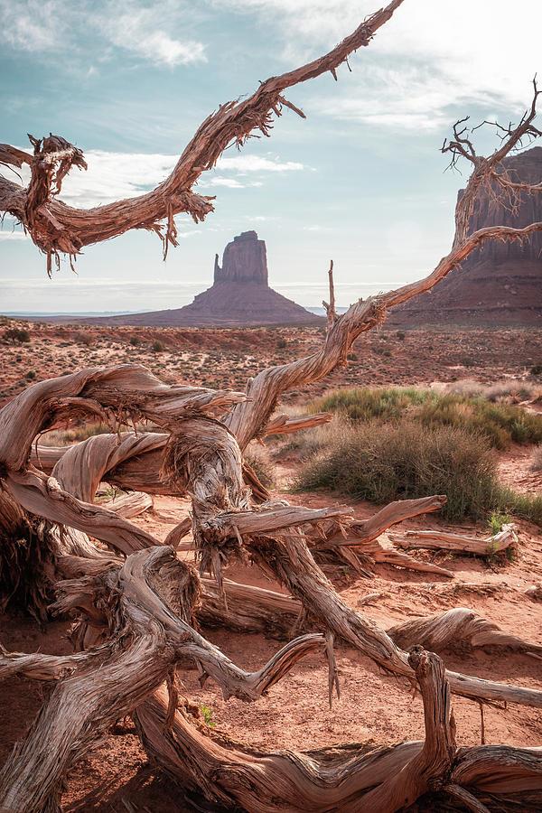 Monument Valley II by Dalibor Hanzal